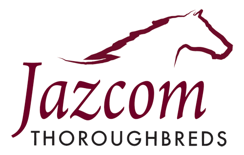 Jazcom provides Horse Spelling and Rehabilitation, predominately to the Thoroughbred Horse Racing Industry.